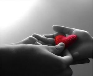 Foto: www.terapiafloral.net