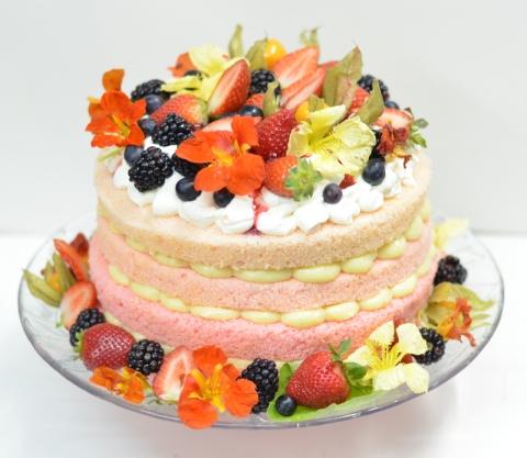 http://blogcheers.com/v1/?tag=naked-cake