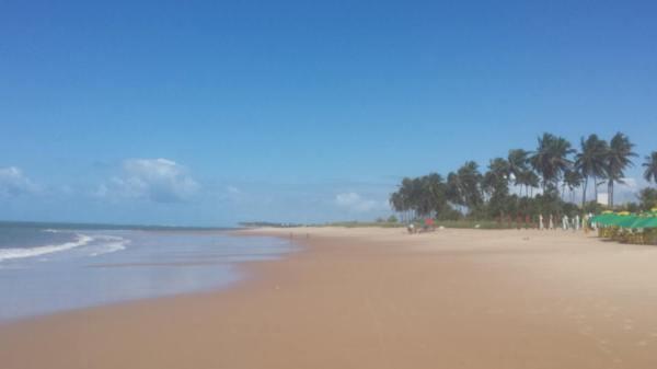 praia do forte 19