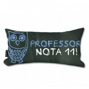 presente dia professor 7
